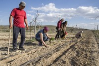 Dreamers create an organic farm in the middle of a steppe