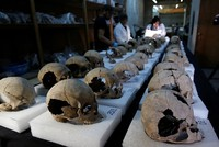 Tower of human skulls found in Mexico casts new light on Aztec sacrifice culture