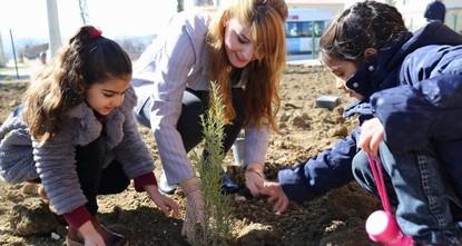 Turkey declares Nov. 11 National Forestation Day