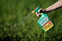 US court orders Monsanto pay $289M to gardener who claims Roundup caused cancer