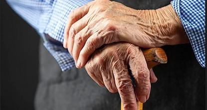 Turkey's elderly make up 8.8 pct of population in 2018
