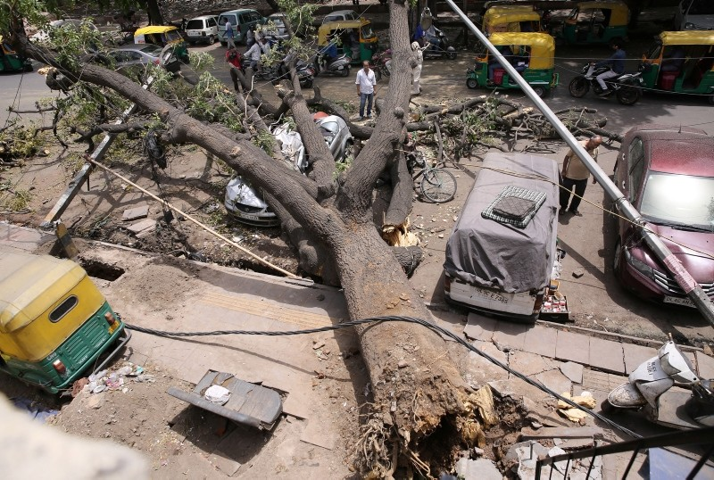 An uprooted that crushed a car lies on the road following a storm in New Delhi, India (EPA Photo)