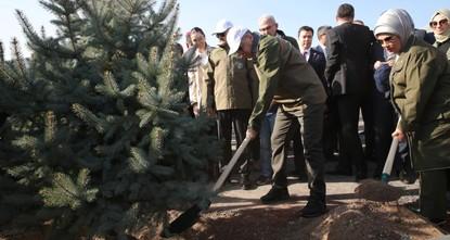 Turkey plants 11 million saplings on forestation day