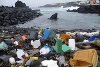 Plastic levels in oceans pose danger to both animals and humans