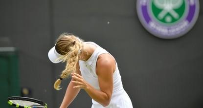Wozniacki knocked out of Wimbledon amid flying ant invasion