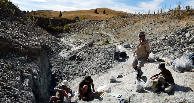 This undated handout picture released by the Te Papa Museum to AFP on January 11, 2018 shows scientists working at an excavating site in St Bathans in New Zealand's Central Otago (AFP Photo)