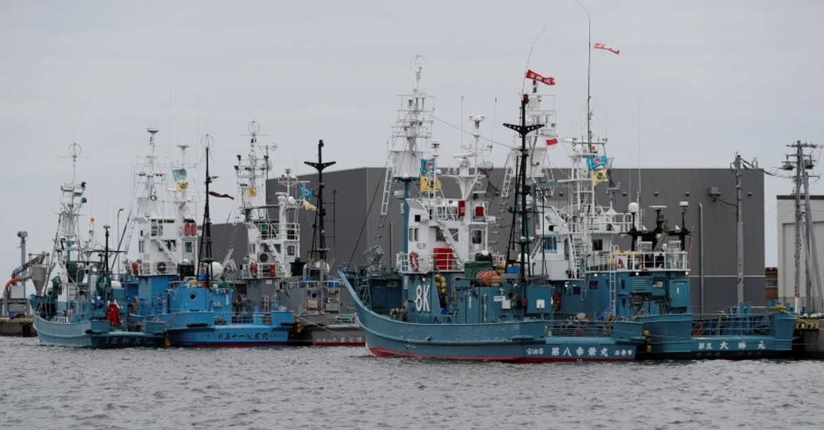 Whaling ships which are set to join the resumption of commercial whaling at anchor at a port in Kushiro, Hokkaido Prefecture, Japan, June 30, 2019. (Reuters Photo)