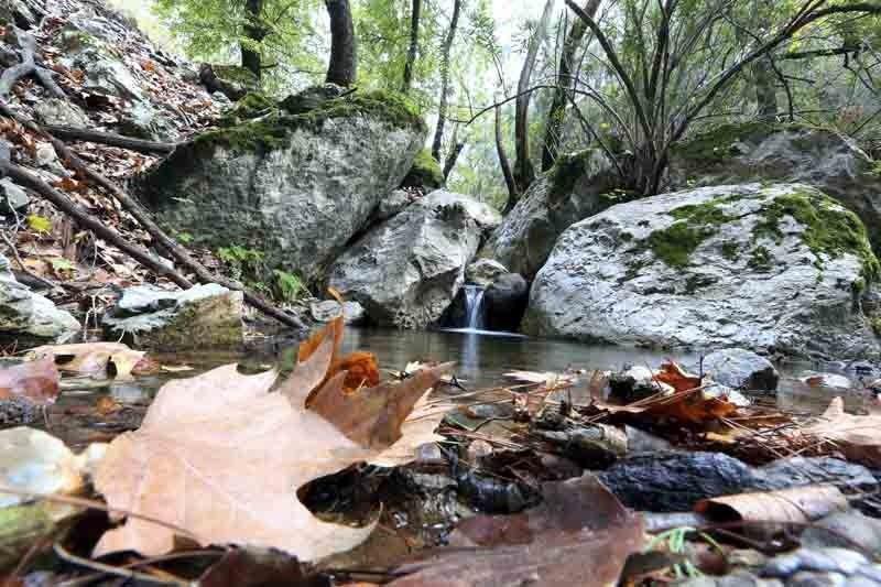 """موغلا"""" التركية عاصمة السياحة الخريفية"""