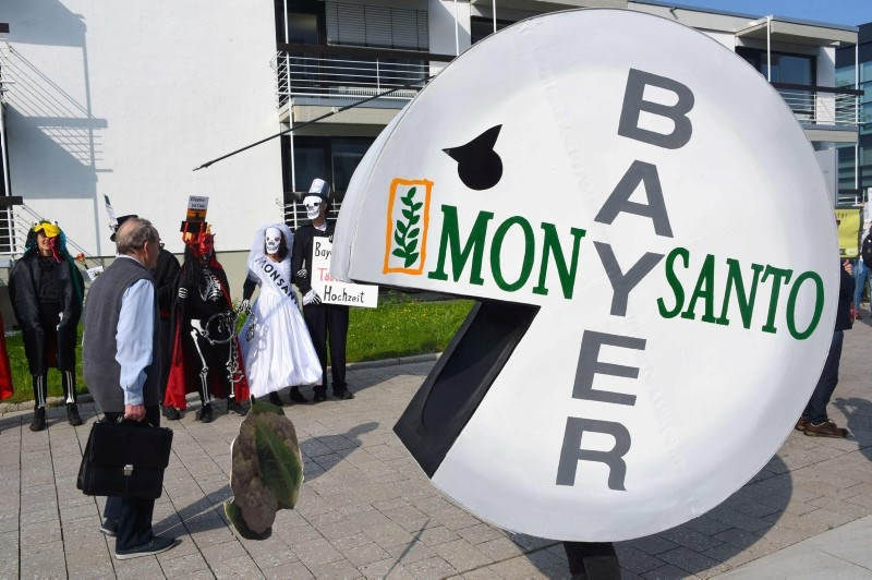 In this file photo taken on May 25, 2018, a protester wears a pill shaped costume bearing the names of Bayer and Monsanto during a demonstration outside the World Conference Center in Bonn, western Germany. (AFP Photo)