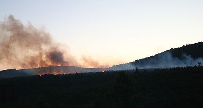 Blaze in Istanbul's Aydos Forest brought under control