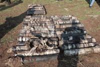 Largest cache of PKK ammunition nabbed in anti-terror operation in SE Turkey