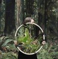 Zilberman Galerie präsentiert 'Young Fresh Different'-Werke