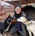Turkish teacher becomes veterinarian for 400 dogs