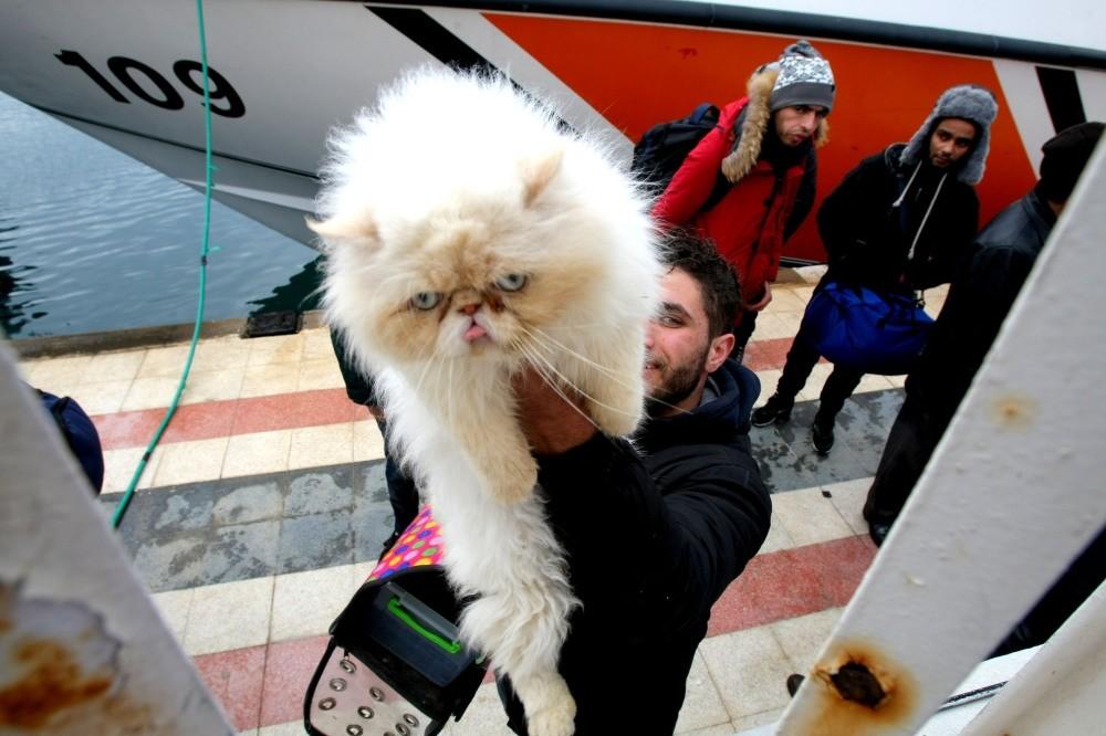 Tariq Kamci poses with his cat.