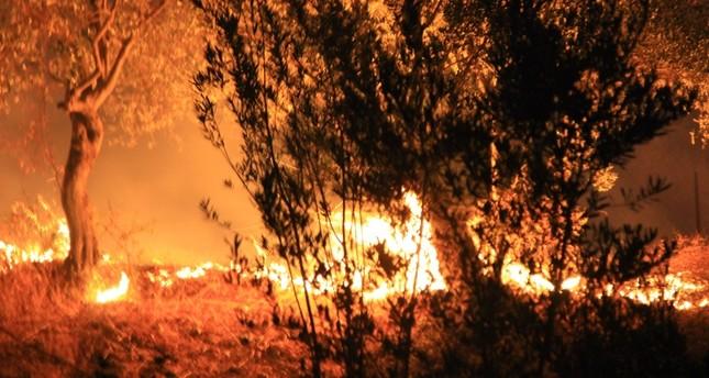 Massive blaze extinguished in Turkey's Muğla, building engulfed in fire in Ankara