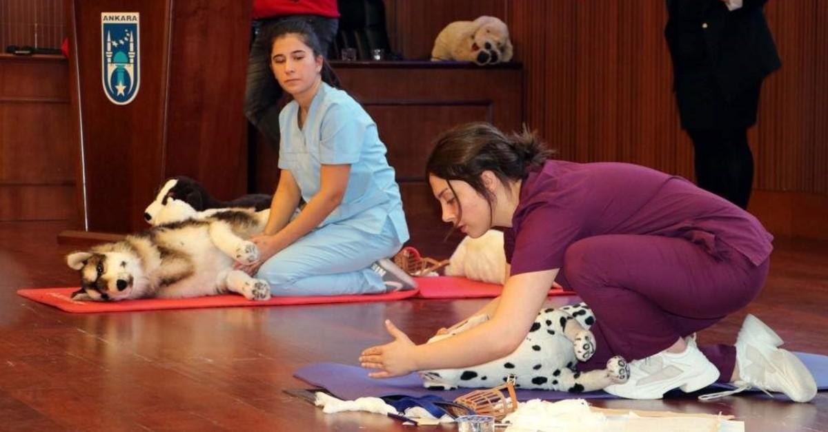 Veterinary nurses demonstrate first response maneuvers on stuffed animals. (DHA Photo)