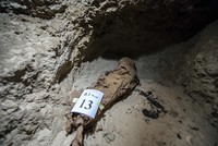 Ancient burial site with 17 mummies discovered in Egypt