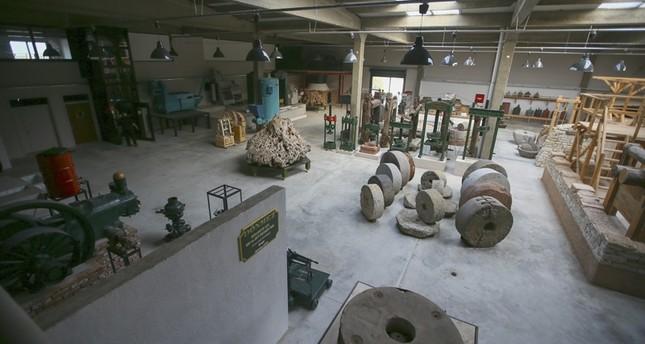 تركي يختصر 3 آلاف سنة من عصر الزيتون في متحف