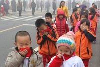 Air pollution significantly lowers intelligence, study shows