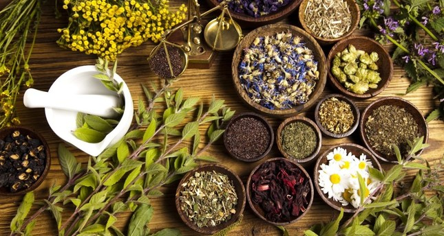 Turkey embraces alternative and complementary medicine
