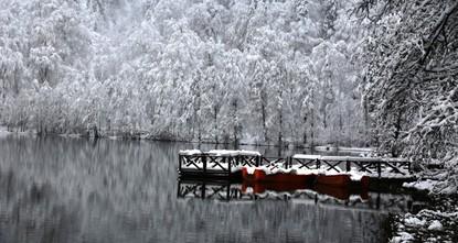 الثلج يضفي رونقاً شتوياً على جمال محمية البحيرة السوداء في أرتفين التركية