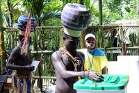 Vote counting starts in Bougainville independence ballot