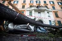 Mindestens zwölf Tote bei Unwettern in Italien