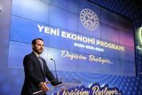 وزير المالية والخزانة التركي براءت ألبيرق