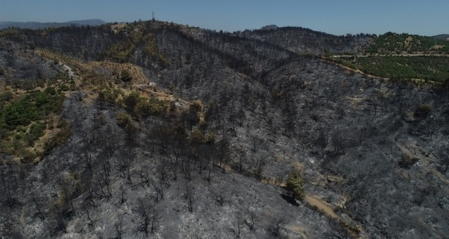Huge forest fire in Izmir brought under control after 2 days of efforts