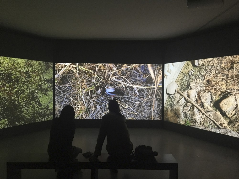 Arter curator Bau015fak Dou011fa Temu00fcr shines a profound light on one of Turkeyu2019s most accomplished video artists at the exhibition u201cIsle,u201d open until July 15.