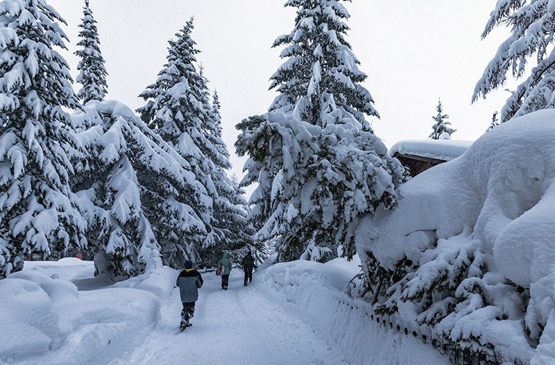Children walk past trees after heavy snowfall in Saas Fee village, near Zermatt in the Swiss Alps, Tuesday, Jan. 9, 2018. (AP Photo)