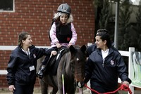 The Turkish Jockey Club (TJK) has opened a third horse therapy center for children with disabilities in the Şirinyer Hippodrome in the Aegean Sea city of Izmir.  Izmir Deputy Governor Erol...