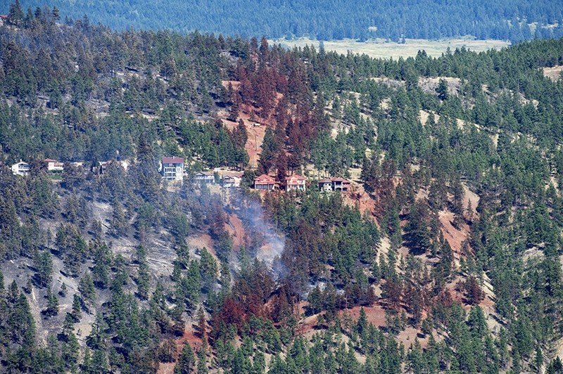 Smoke and fire retardant are seen along a neighborhood in Lake Country, British Columbia, Sunday, July 16, 2017.  (AP Photo)