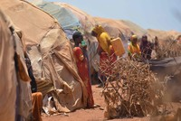 Thousands flee to Somalia's cities as hunger claims more lives