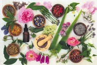 Phytotherapy: Complementary medicine in spotlight in 21st century