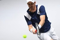 'Gutted' Murray out of ATP Cup, Australian Open