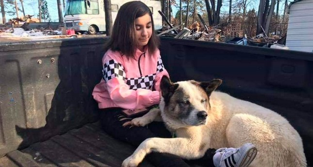 This Feb. 18, 2019 photo provided by Ben Lepe shows Maleah Ballejos reunited with her dog Kingston in Paradise, Calif. (AP Photo)