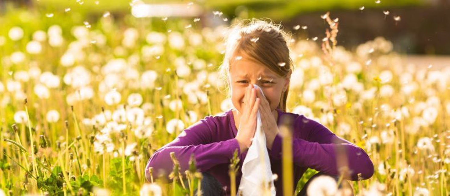 Girl sitting in a meadow with dandelions and has hay fever or allergy. (FILE Photo)