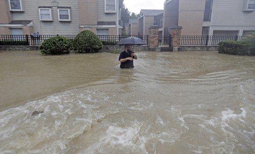 Houston Dog Show Evacuation