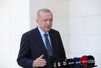 الرئيس التركي يعلن السيطرة على معظم حرائق الغابات والتحقيق في ملابساتها