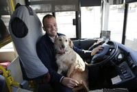 Bus driver gives stray dog a ride to keep it warm