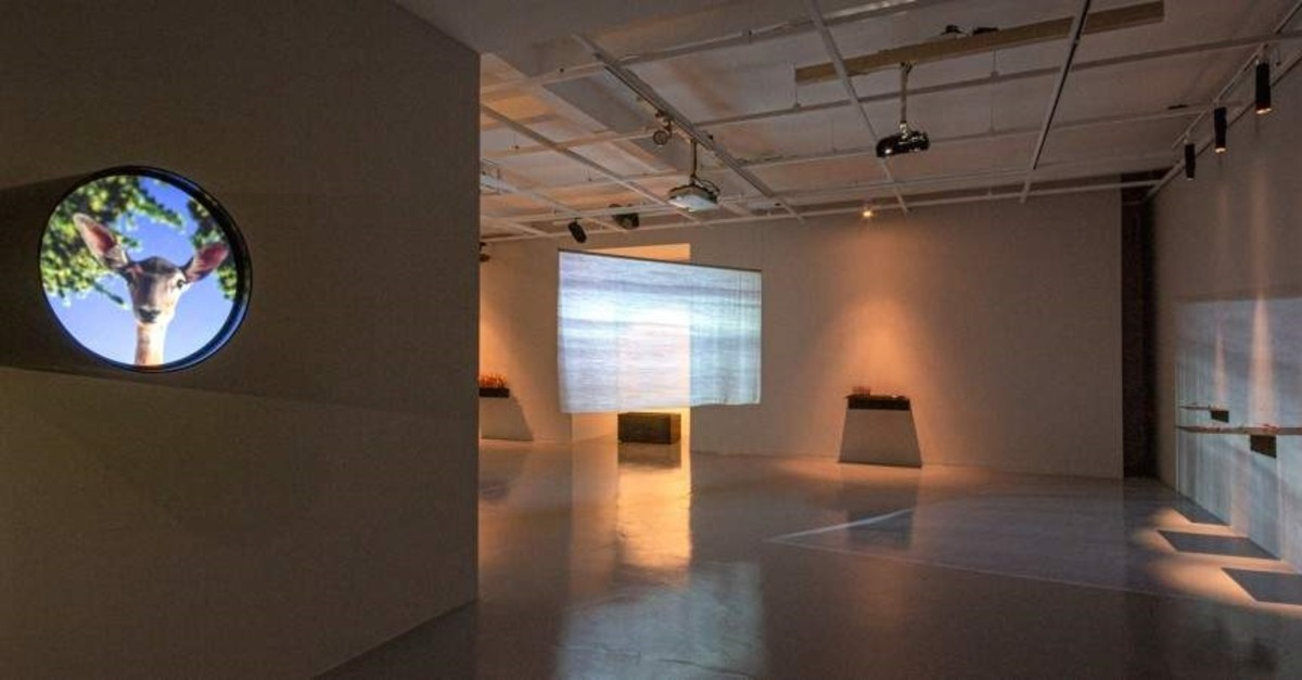 Installation view from 'Where the Winds Rest' (courtesy of Galeri Nev Istanbul)