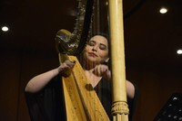 Istanbul's first international harp festival set for January