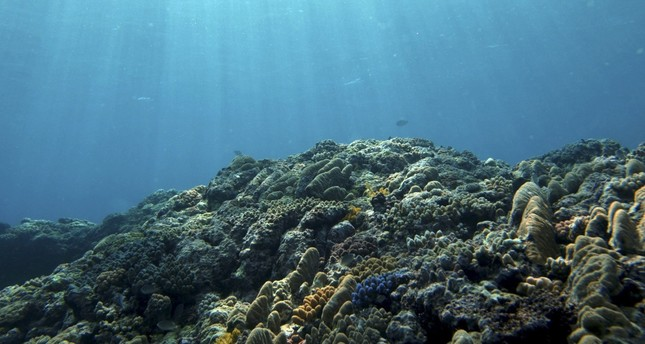 Hydrogen gas reserves could be hiding under ocean