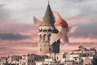 من أعمال المصمم السريالي التركي ياسين يامان حول مدينة إسطنبول (الأناضول)