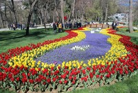 Tulips everywhere as Istanbul kicks off spring festival