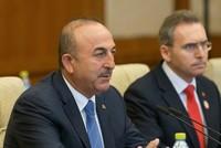 """Die Türkei sei nun ein offizieller, sektoraler Dialogpartner des """"Verbandes Südostasiatischer Nationen"""