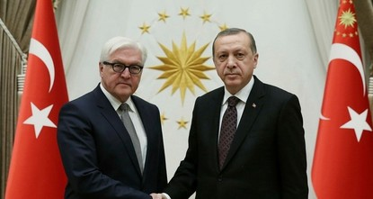 Erdoğan, Germany's Steinmeier discuss Afrin operation