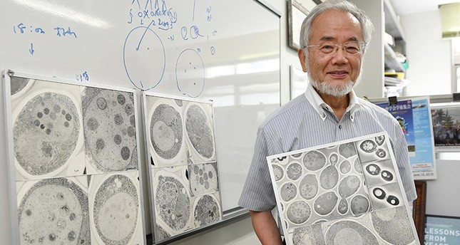 In this July, 2016 photo, Japanese scientist Yoshinori Ohsumi smiles at the Tokyo Institute of Technology campus in Yokohama, south of Tokyo. (AP Photo)