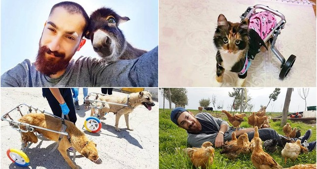 Young Turkish man creates life-saving prosthetic limbs for animals for free